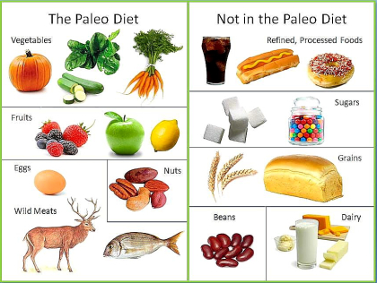 paleo-explained-in-a-graphic